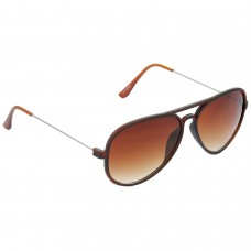 Trail Blazer Metal Frame Brown Lens & Brown Frame Sunglasses for Men and Women - HRS13